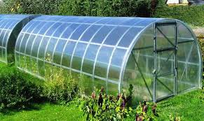 Green House Tunnels (5)